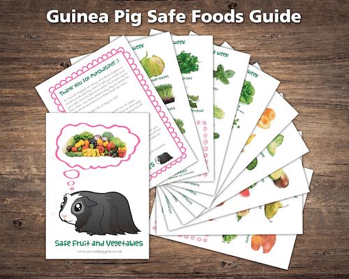 guinea pig fruit and veg sheets pdf