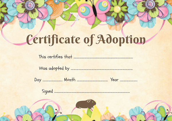 colourful guinea pig adoption certificate