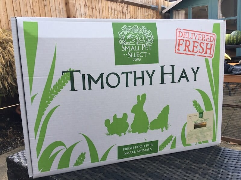 Small Pet Select Timothy Hay for Guinea Pigs